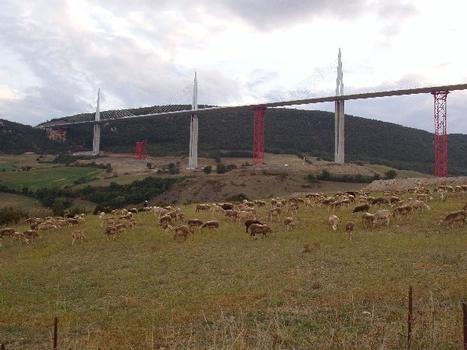 Viaduc de MillauDescente des palées (5 sur7)