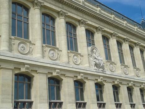 Le Museum national d'Histoire naturelle, galerie de zoologie (Paris 5e)