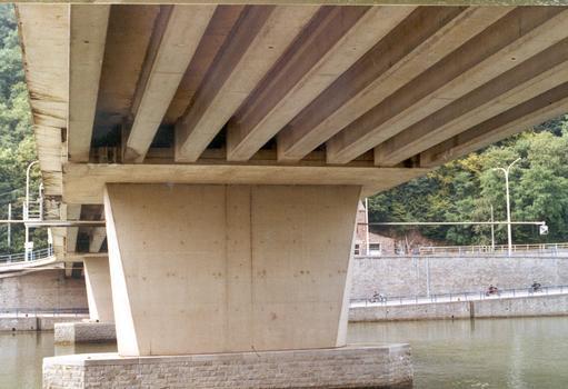 Maasbrücke Profondeville  Ein Feld