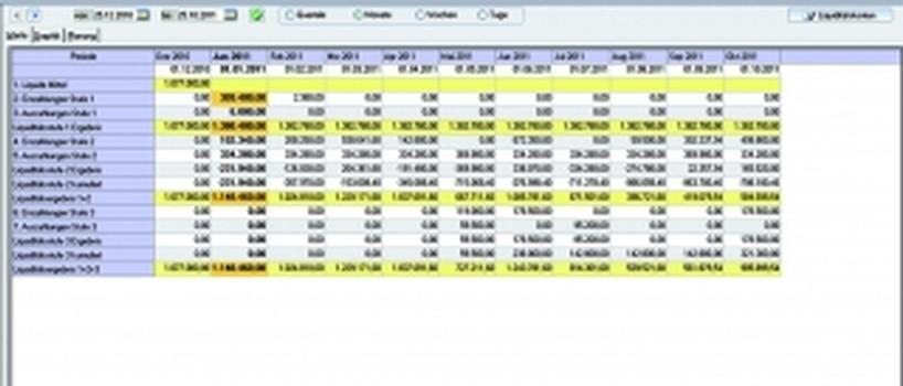 Liquiditätsplanung im Projektgeschäft