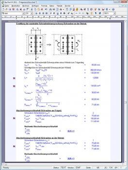 Ermittlung der maximalen Schraubenbeanspruchung und der Abscherbeanspruchbarkeit nach EC3 (Screenshot: Veit Christoph)