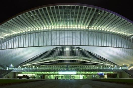 MSH-Profile für Calatravas Gare Liége-Guillemins