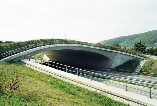 Grünbrücke A72