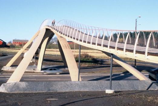 Leonardo's Bridge finally built in Norway