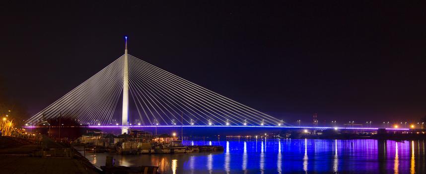 Pont sur la Sava