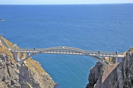 The 50-metre long bridge connects the mainland of County Cork in Ireland with Cloghan Island