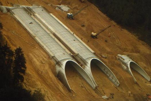 """Greenbridge"", ""Woeste Hoeve"" national park during construction …"