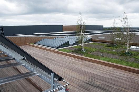 Details Dächer Terminals WE und WA - Dachgarten