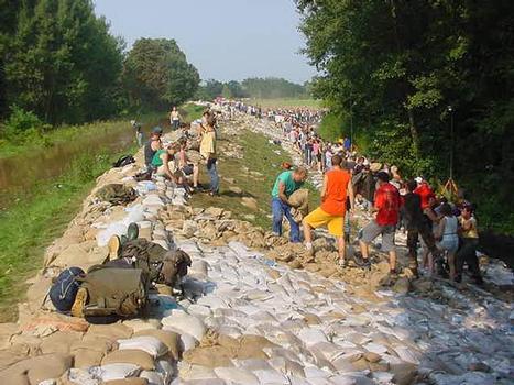 Freiwillige Helfer beim Verstärken eines Deiches an der Elbe