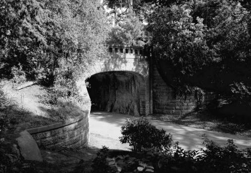 Alvord Lake Bridge. (HAER, CAL,38-SANFRA,138-1)