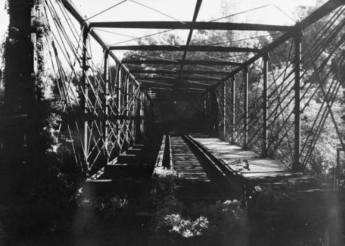 Bollman Truss Bridge. (HAER, MD,14-SAV,1-;DLC/PP-99:MD-211)