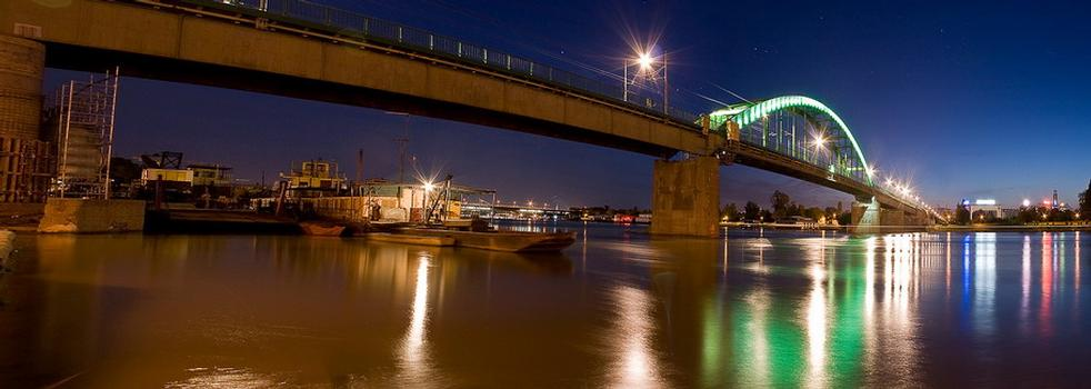 Sava River Road Bridge