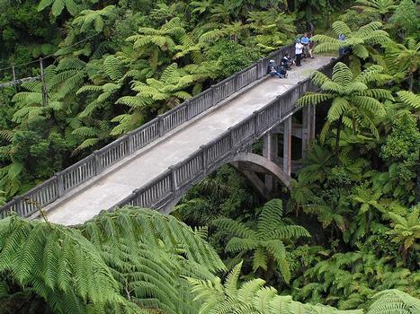 Mangapurua Bridge