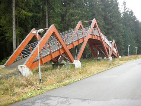 Loipenbrücke Grünbach