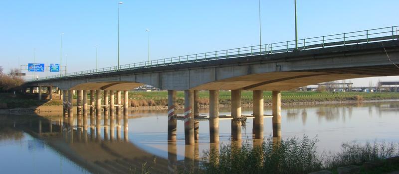 Puente Rey Juan Carlos I