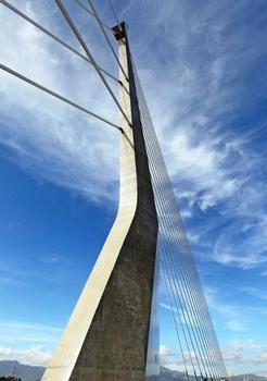 Bridge of Knowledge