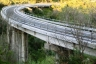 A 11/A 12 Motorway (Italy)