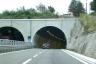 A 16 Motorway (Italy)