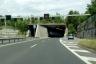 Autobahn A1a (Schweiz)