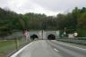 Avenco Pass Tunnel