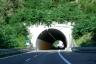 Fo Tunnel