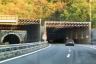 Belvedere Tunnel