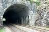 Büel Tunnel