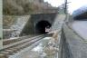 Lume Tunnel