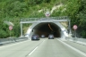 Agnesburgtunnel