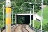 Bristen Tunnel