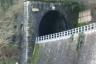 Aiola Tunnel
