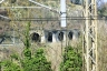 Burchio Tunnel