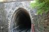Bastardo Tunnel