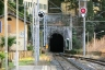 Biosio Tunnel