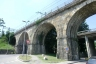 Brembo Rail Bridge