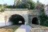 Brignello South Tunnel
