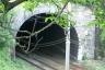 Bronzino Tunnel