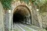 Case Vicine Tunnel