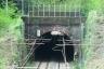 Croce Tunnel