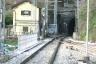 Pino Tunnel