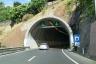 Amoreira Tunnel