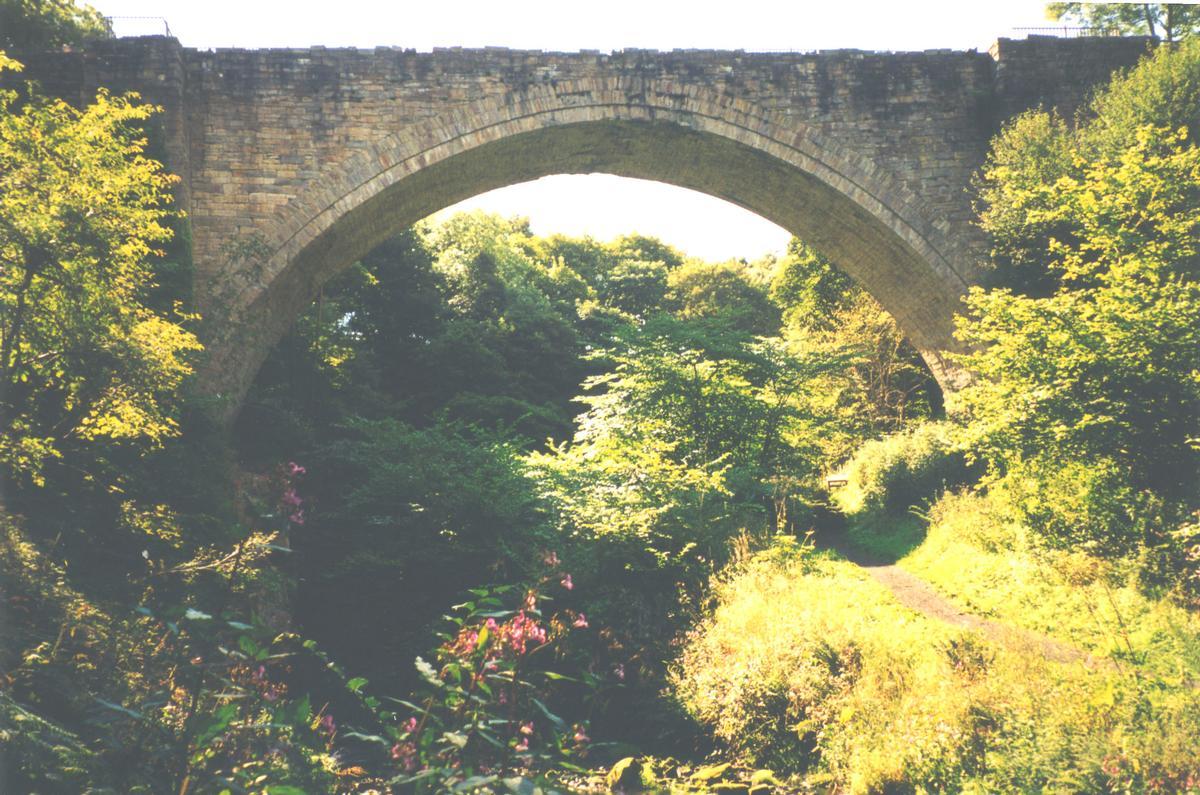 Causey Arch.