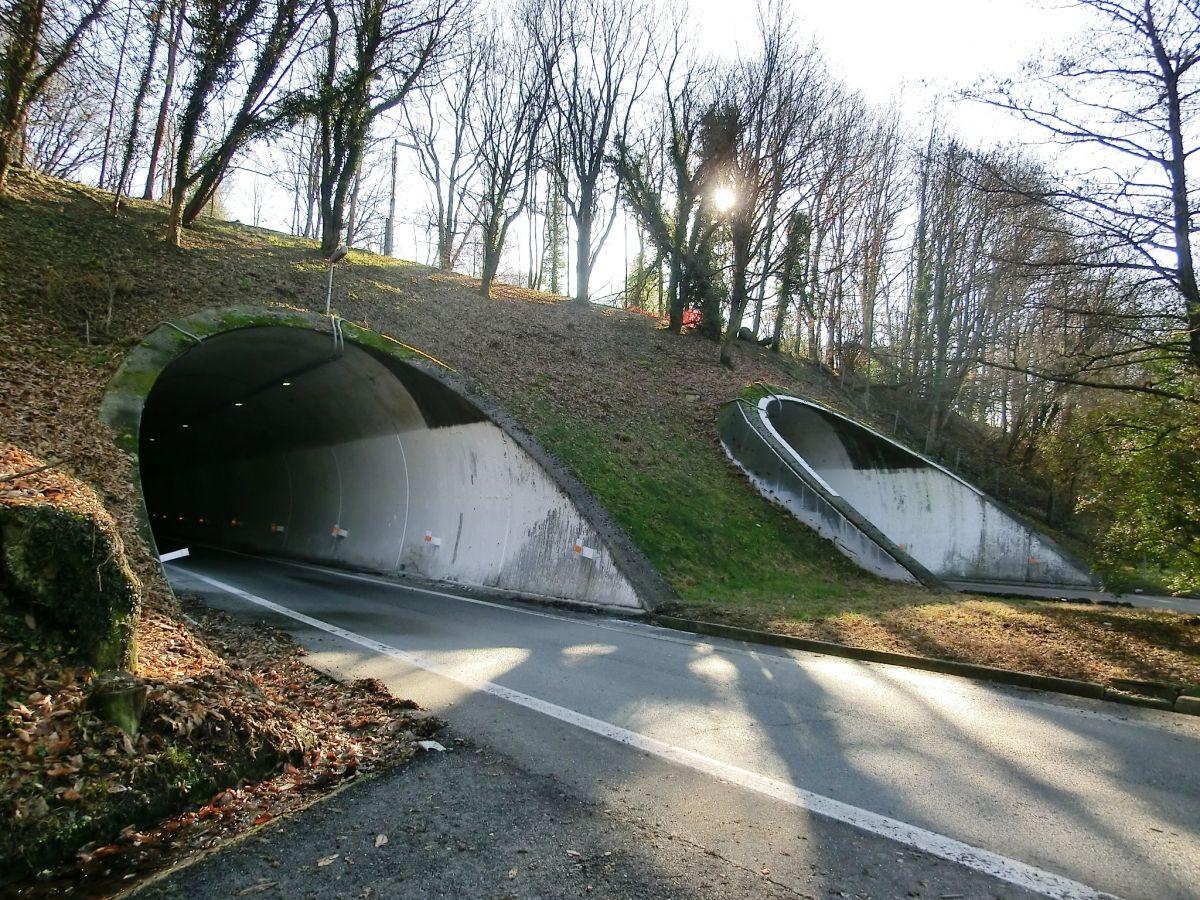 Tunnel Carpugnino