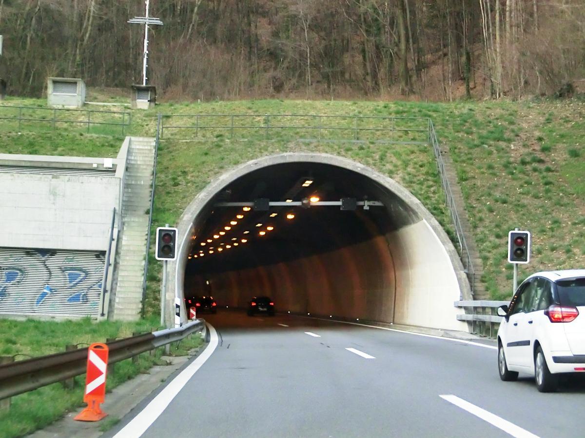 Tunnel Dosso di Taverne