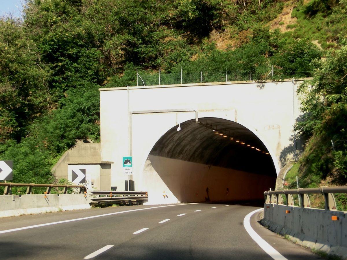 Nigiu Tunnel western portal