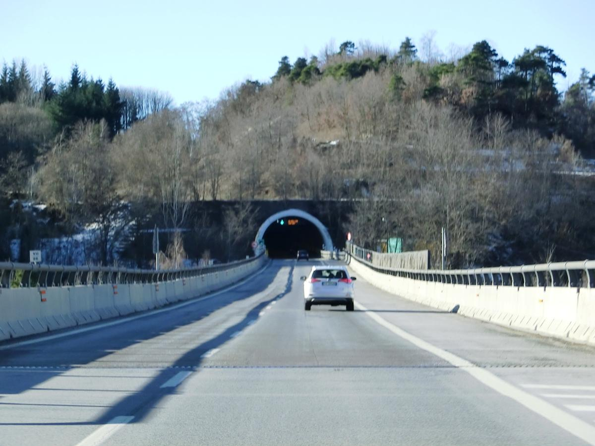 Tunnel Ronchi