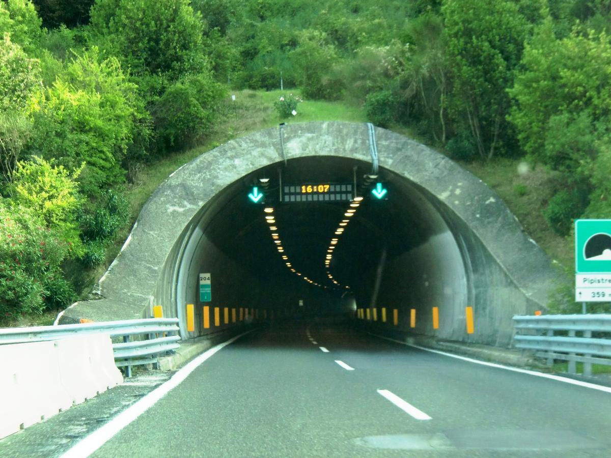 Tunnel Pipistrello