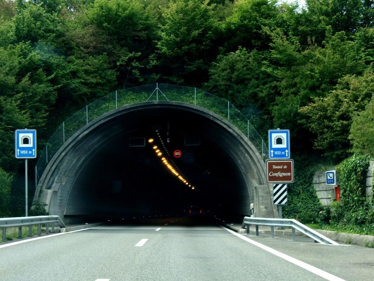 Confignon Tunnel, northern portal