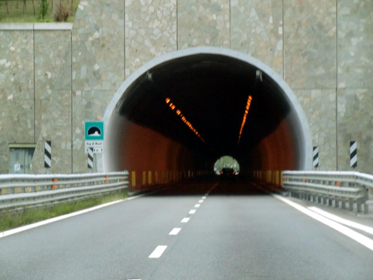 Gay di Monti Tunnel, western portal