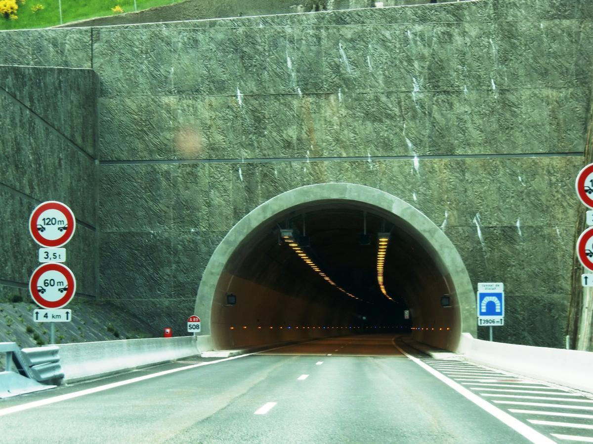 Violay Tunnel, eastern portal